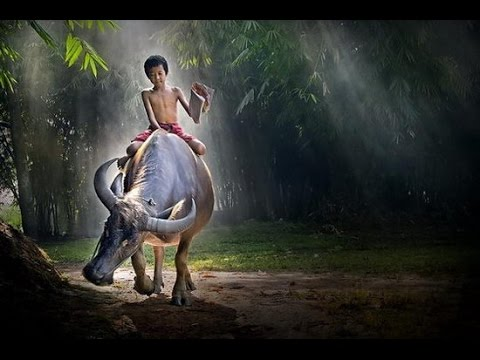 Quê Hương Tôi – Thái Hòa 0404 !!!