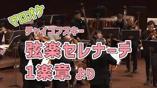 チャイコフスキー/弦楽セレナーデ第1楽章より