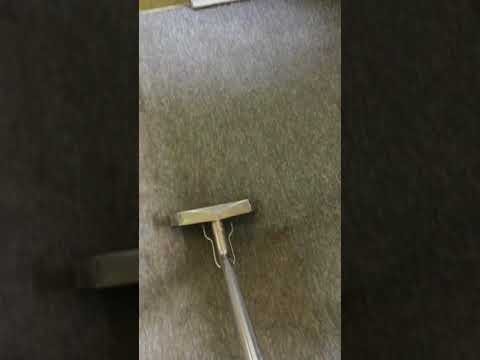 Carpet Cleaning - Steam Carpet Cleaning By Fastline Cleaners Melbourne