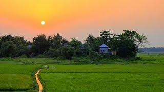 আমাদের গ্রাম (আলীপুর)  An Aerial Video of our Beautiful Village in Bangladesh. DJI Phantom 3 👍🚁✌😁 full download video download mp3 download music download