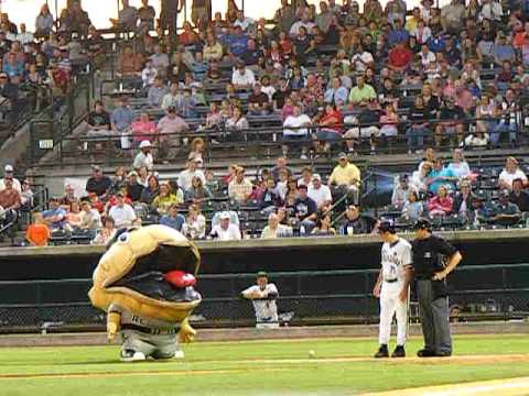 Charleston riverdogs - During an intermission at the Charleston Riverdogs' game on May 1, 2010, guess mascot Roger Clamens took it upon himself to eat the RiverDogs' batboy.