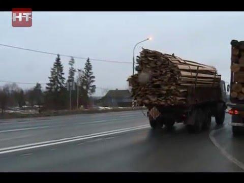 Сегодня был проведен рейд по проверке незаконного вывоза древесины