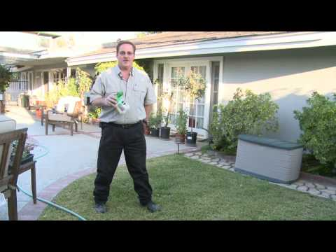 Home & Lawn Pest Control : How to Get Rid of Moles in Your Lawn.