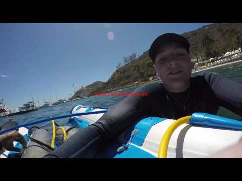 Scuba Diving at Catalina Islands_Legjobb vide�k: B�v�rkod�s