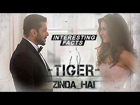 Salman Khan Katrina Kaif's Tiger Zinda Hai   Inter