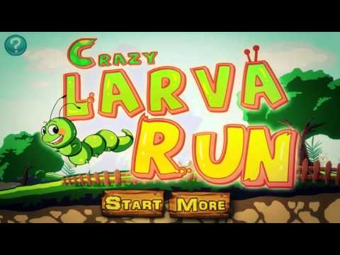Video of Crazy Larva Run