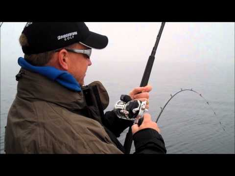 Catching Big Fish – Great Lakes Salmon Fishing, Sheboygan Wisconsin
