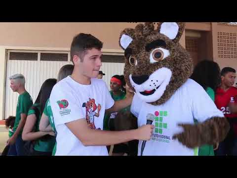 5º JIFMT: Mascote do Campus Primavera do Leste, IFera recepciona atletas e torcedores