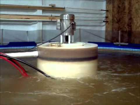 biofloc video