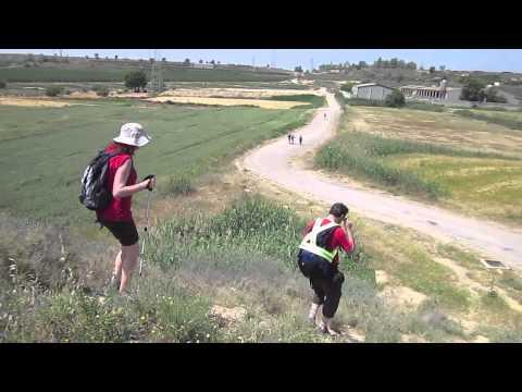 Camí de Sant Jaume 2012: el Palau d'Anglesola Lleida