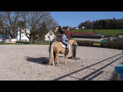 Holziken Ranch Riding Enie