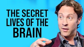 The New Structure of Infinite Possibility  | David Eagleman on Impact Theory
