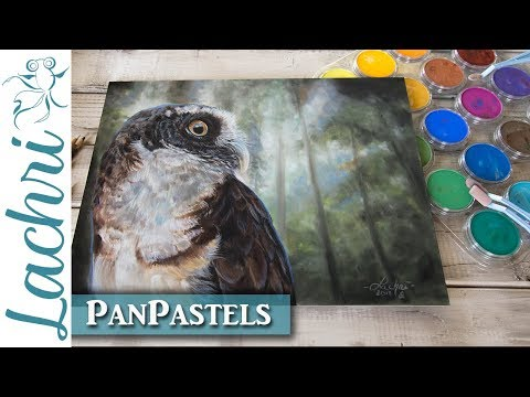 PanPastel Review & drawing an owl demonstration - Lachri
