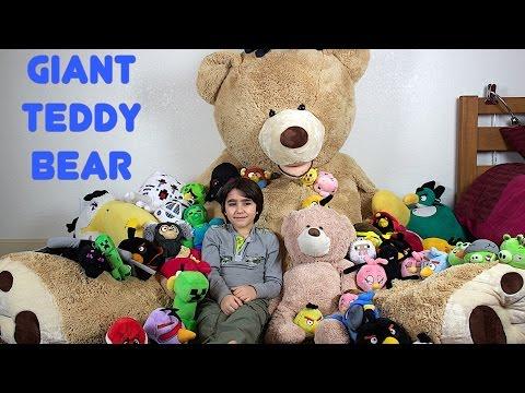 Huge Plush Collection - GIANT TEDDY BEAR