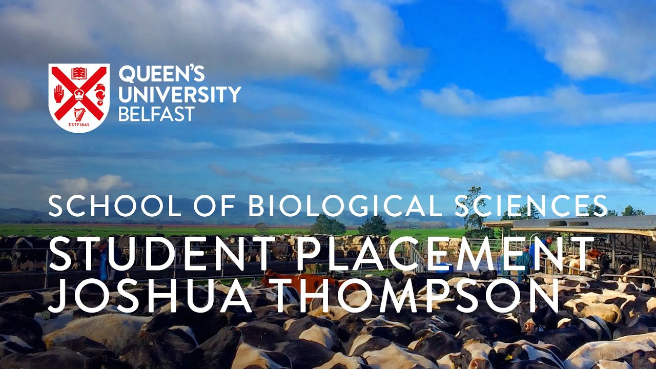 School of Biological Sciences placements: Joshua Thompson