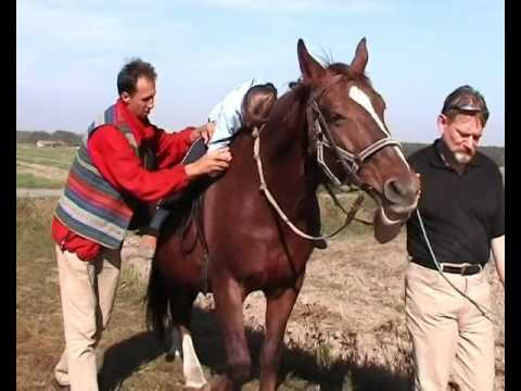 Fundacja na Rzecz Rozwoju Hipoterapii Konie-Dzieciom - niepozorny 1%