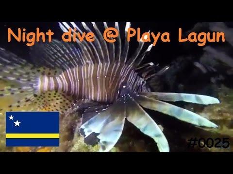 Nachtduik vanaf Playa Lagun op Curaçao