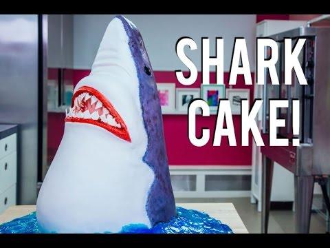 How To Make A SHARK CAKE! Chomp down on CHOCOLATE CAKE for SHARK WEEK!