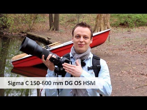 Sigma 150-600 mm Contemporary - Super-Telezoom-Objektiv im Test [Deutsch]
