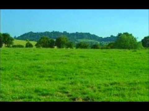 Ralph Vaughan Williams - Fantasia on a Theme by Thomas Tallis