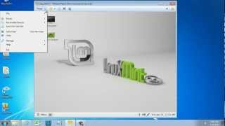 VMware Linux Mint in Full Screen with VMware Tools