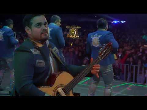 Edwin Luna y La Trakalosa de Monterrey - Fíjate que sí (Video Lyric) - Thời lượng: 3 phút, 25 giây.