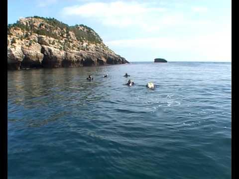 Inmersión Mouro con Mourosub, Mares y Bajoelagua Factory