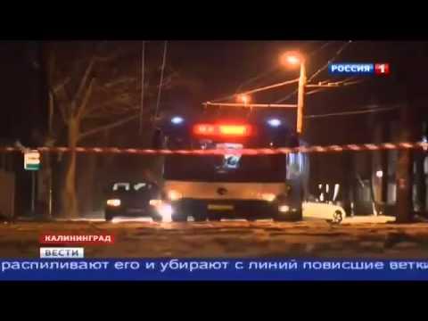 Новости 11 января 2015. Сильнейший ураган в Калининградской области (видео)
