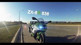2. 2015 Kawasaki Ninja ZX6R anniversary edition