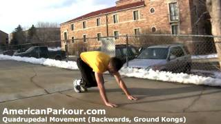 Quadrupedal Movement (Backwards, Ground Kongs) - Parkour Training and Conditioning Exercise