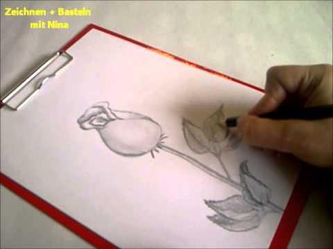 Zeichnen lernen für Anfänger.  Blume zeichnen. Eine Rose malen