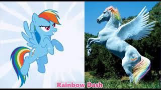 شخصيات مهرتي الصغيرة في الحقيقة/My Little Pony Characters In Real Life