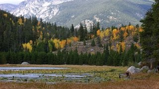 Estes Park (CO) United States  city photos : Cub Lake Hike , Rocky Mountain National Park, CO, USA