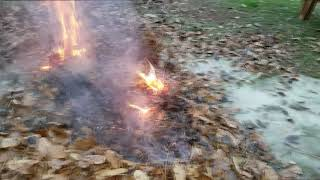 Dramatic Fire Donkey by Sound Experiments