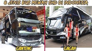 Video 8 Jenis BUS Mewah SHD Double Glass TERGAGAH di Indonesia MP3, 3GP, MP4, WEBM, AVI, FLV Maret 2019