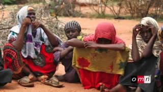 OMN: Weekly Amharic News  November 11,  2014