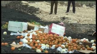 TP Uông Bí thu giữ, tiêu hủy 600kg hoa quả nhập lậu