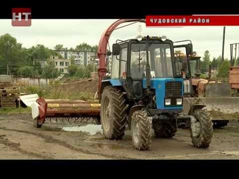 Более 37 миллионов рублей будет направлено на поддержку молочных хозяйств региона