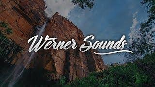 Vicetone - Heartbeat (DMNDZ Remix) [Werner Sounds]