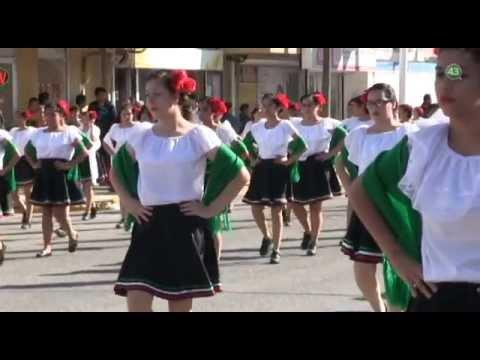 Conmemoran desfile revolucionario en Victoria