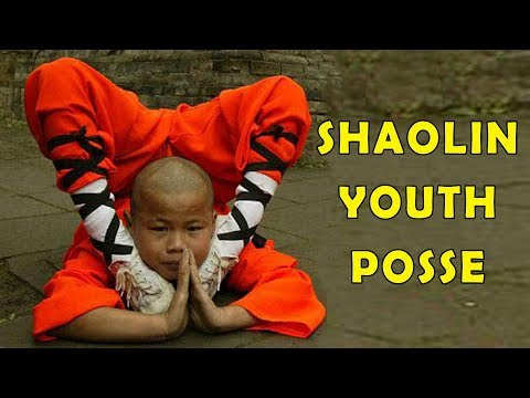 Wu Tang Collection - Shaolin Youth Posse