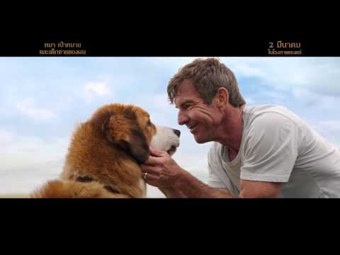 A Dog's Purpose | Home | TV Spot