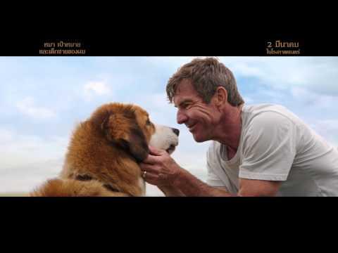 A Dog's Purpose | Home | TV Spot