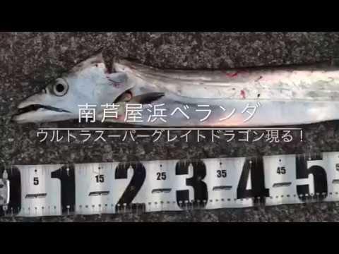 【スーパーウルトラギガモンスター登場!?】南芦屋浜ベランダ