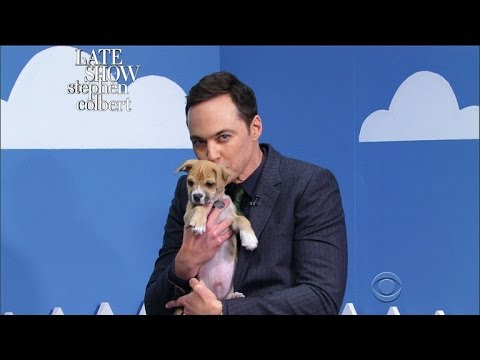 The Late Show Rescue Dog Rescue With Jim