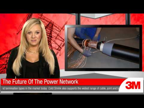 The Future Of The Power Network