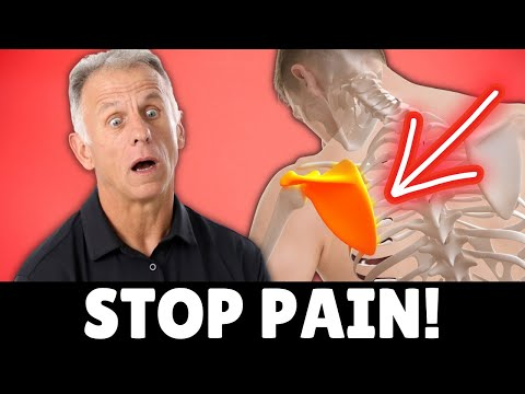 Top 3 Exercises to Stop Pain Between Shoulder Blades