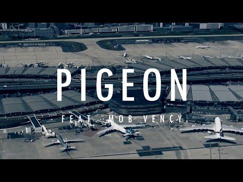Pigeon mimizik