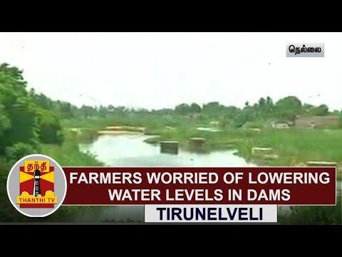 Farmers-worried-of-lowering-water-level-in-Dams-at-Tirunelveli-Thanthi-TV