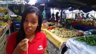 TNews: Tradição do Caruru